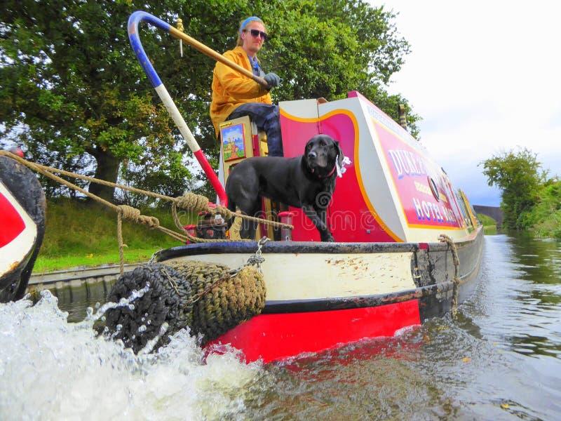 Mann und Hund, die auf Kanalboot kreuzen lizenzfreie stockfotos