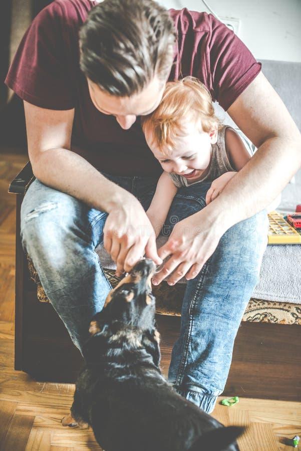 Mann und Kleinkind mit Hund in einem Raumspielen lizenzfreie stockbilder