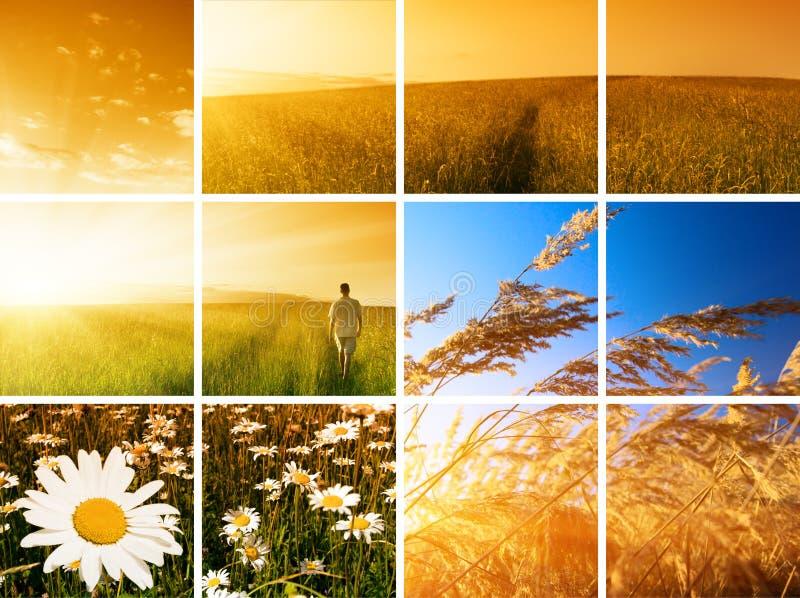 Mann und Sonnenuntergang lizenzfreies stockbild