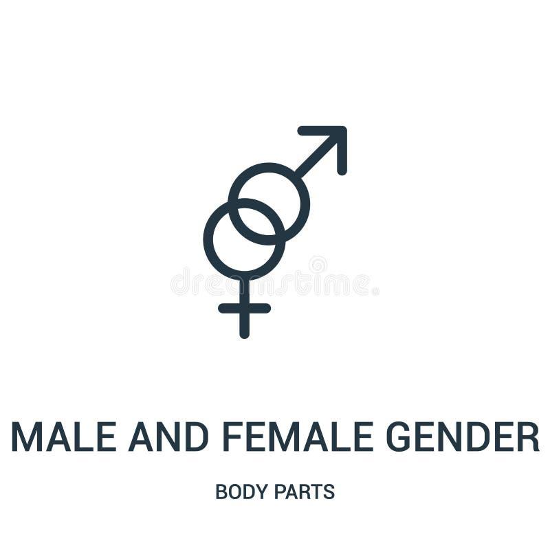 Mann und weiblicher Geschlechtssymbolikonenvektor von der Körperteilsammlung Dünne Linie Mann und weibliche Geschlechtssymbolentw stock abbildung