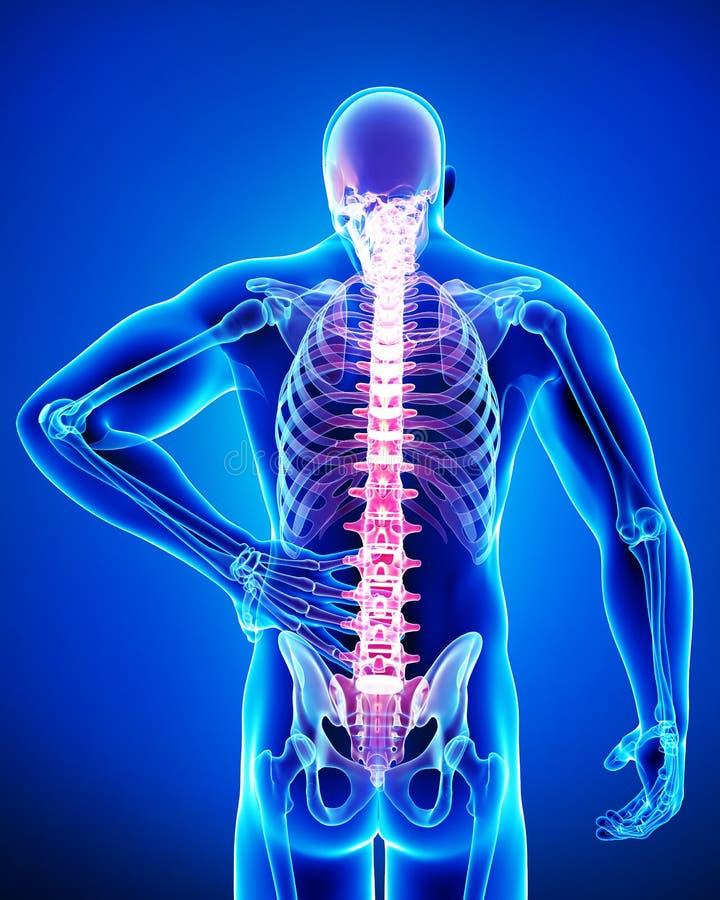 Mann von Rückenschmerzen vektor abbildung