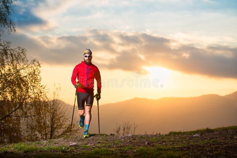 Mannathlet mit Hinterbartspur mit Stöcken bei Sonnenuntergang lizenzfreie stockfotos