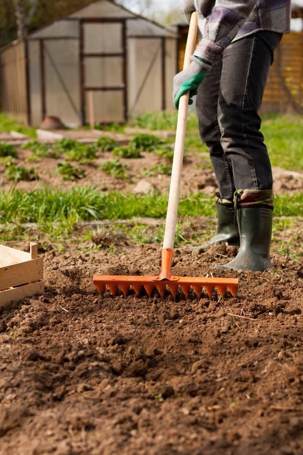 Mannelijk de Tuinhulpmiddel van Tuinmanraking soil with royalty-vrije stock afbeeldingen
