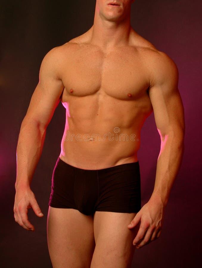 Mannelijk lichaam royalty-vrije stock afbeeldingen