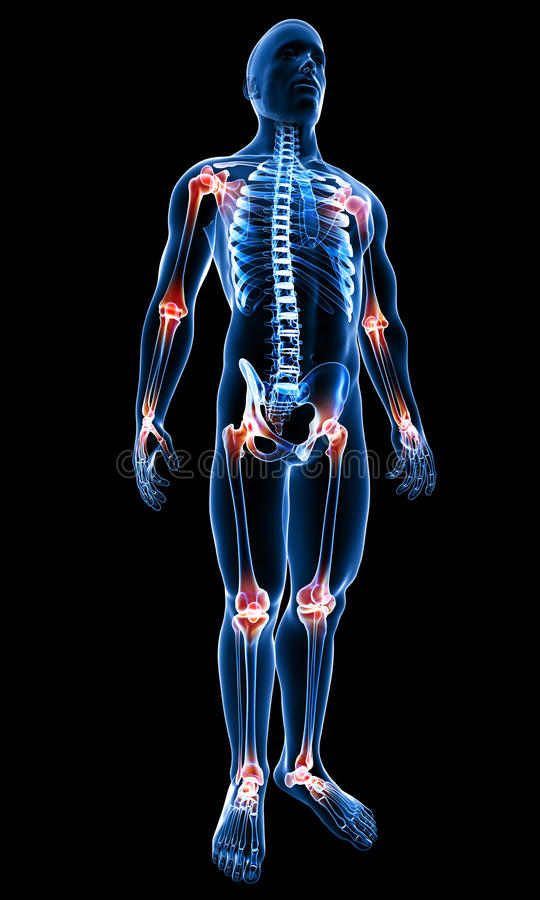 Mannelijk lichaam met benadrukte verbindingen vector illustratie