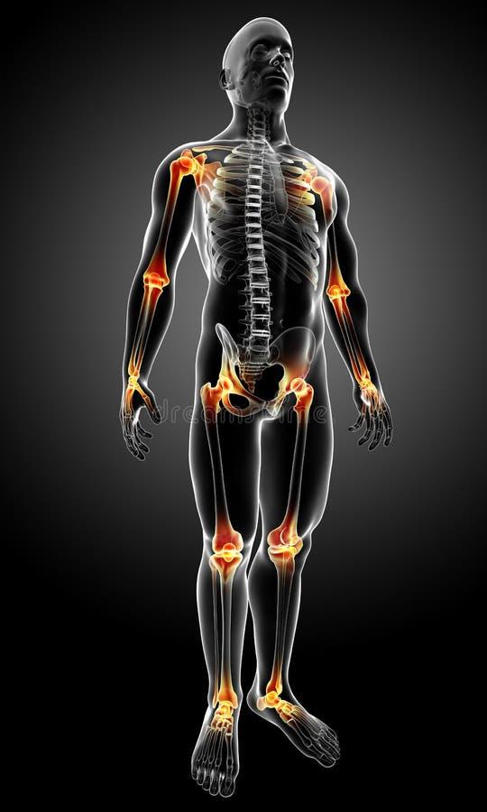 Mannelijk lichaam met gezamenlijke pijn vector illustratie