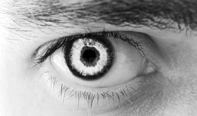 Mannelijk oog royalty-vrije stock afbeeldingen