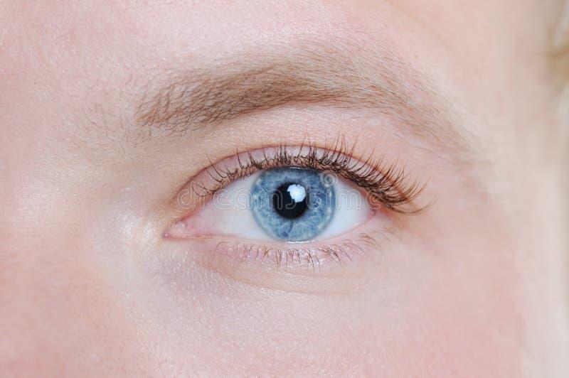 Mannelijk oog royalty-vrije stock afbeelding