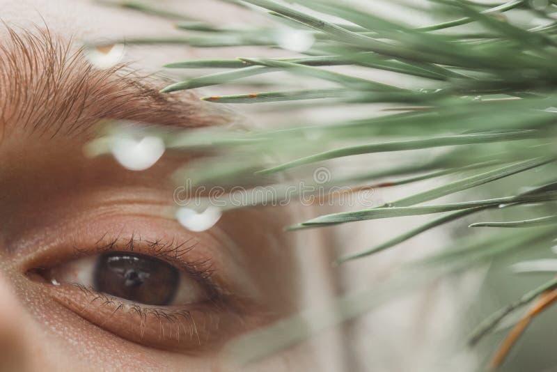 Mannelijk oogclose-up op de achtergrond van dauw op de naalden wimpers in macro hoger en lager ooglid stock foto's