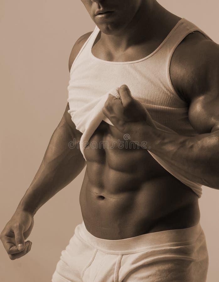 Mannelijk torso met T-stukoverhemd stock afbeeldingen