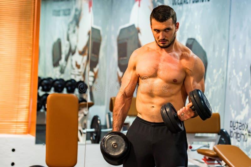 Mannelijke atleet die bicepsenoefening met domoren doen stock fotografie