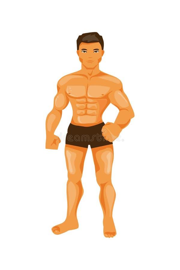 Mannelijke bodybuilder royalty-vrije illustratie