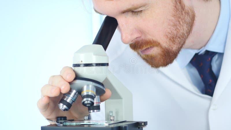 Mannelijke Chemicus Scientific Reseacher die Microscoop in Laboratorium gebruiken stock foto's