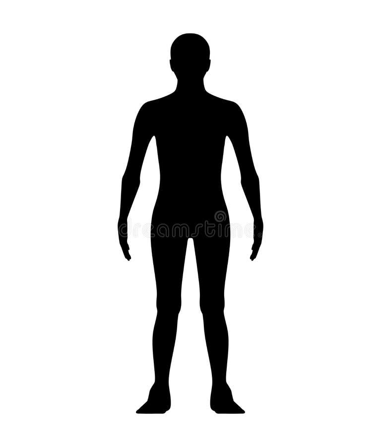 Mannelijke die vorm in vooraanzicht op wit wordt geïsoleerd Silhouetten royalty-vrije illustratie