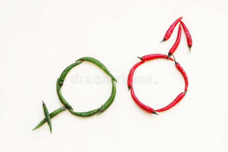 Mannelijke en Vrouwelijke Geslachtstekens gemaakt van rode en groene hete peper op een lichte achtergrond royalty-vrije stock foto's