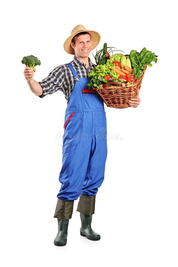 Mannelijke landbouwer die een mandhoogtepunt van groenten houdt royalty-vrije stock foto
