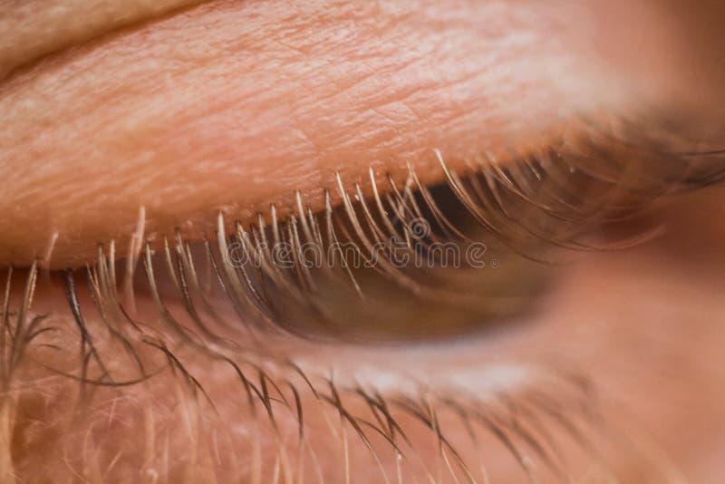 Mannelijke oog dichte omhooggaand wimpers in macro hoger en lager ooglid stock afbeeldingen