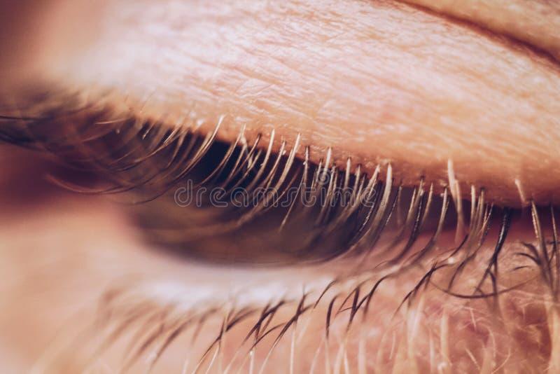 Mannelijke oog dichte omhooggaand wimpers in macro hoger en lager ooglid stock foto