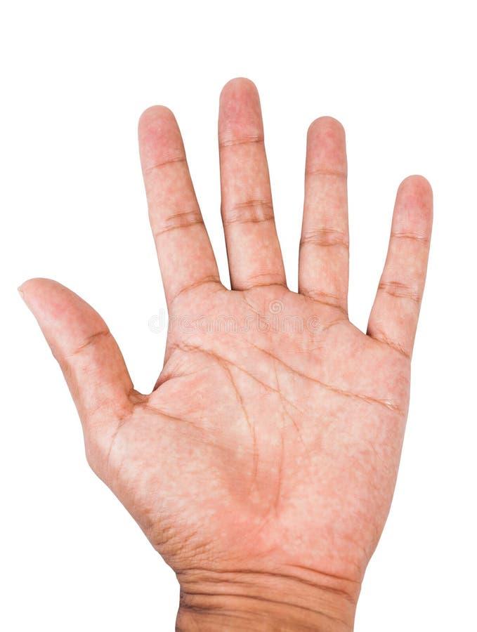 Mannelijke palmhand stock afbeelding