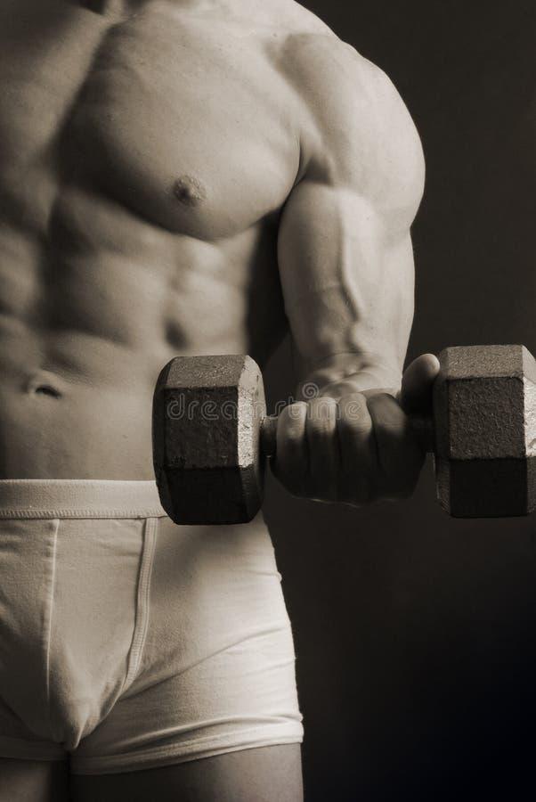 Mannelijke spier met ijzergewicht royalty-vrije stock foto's