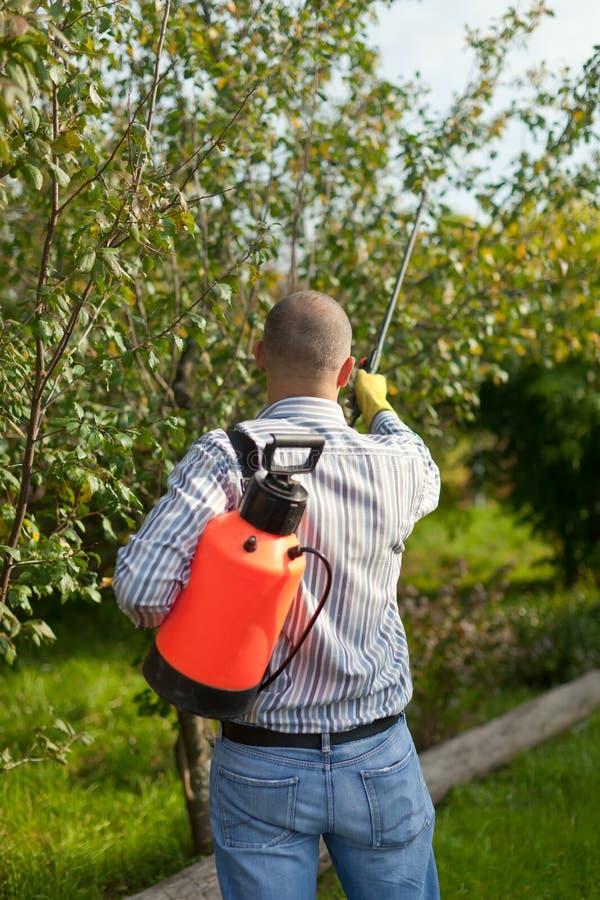 Mannelijke tuinman bespuitende bomen stock fotografie