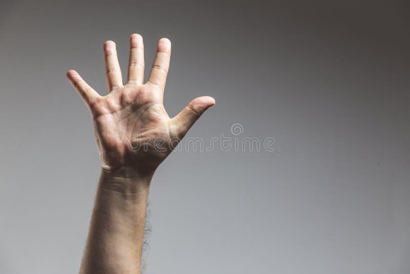 mannelijke volwassen hand die nummer vijf gebaar in studioschot toont dat op grijze achtergrond wordt geïsoleerd - Mannelijke han stock afbeelding