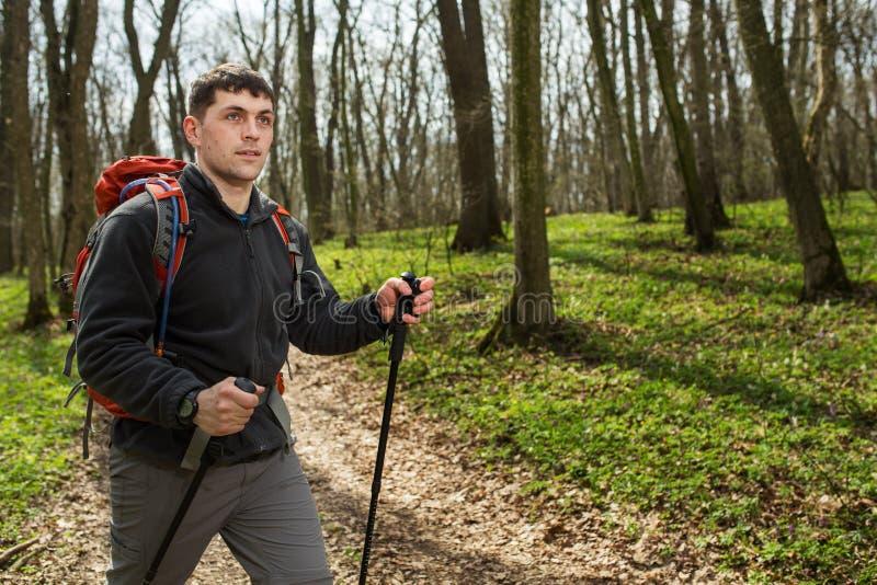 Mannelijke wandelaar die aan de partij kijken die in bos lopen royalty-vrije stock afbeeldingen