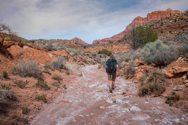 Mannelijke Wandelaar die Wassleep onderzoeken stock foto