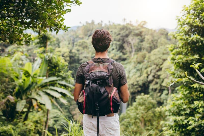 Mannelijke wandelaar die waterval bekijken stock fotografie