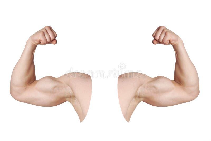 Mannelijke wapens met gebogen bicepsenspieren royalty-vrije stock foto's