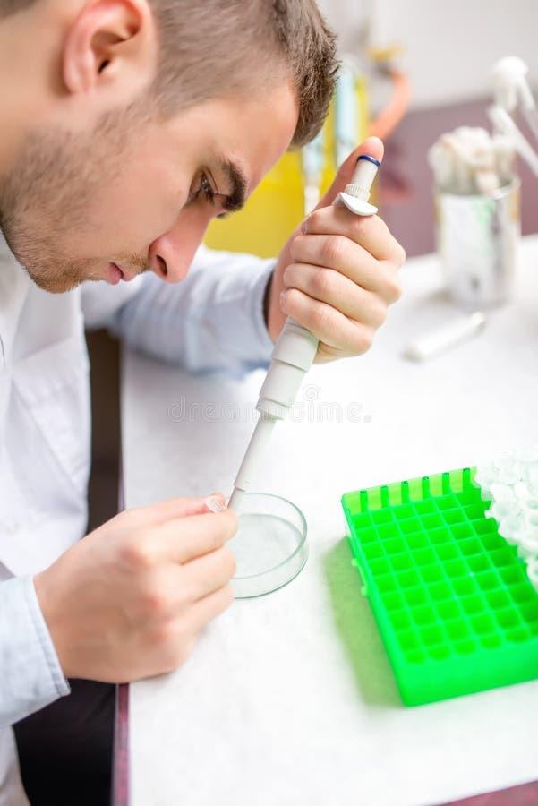 Mannelijke wetenschapper en chemicus die steekproeven en chemische elementen onderzoeken stock fotografie