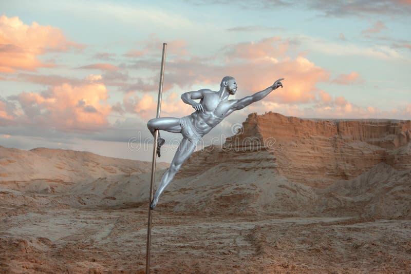 Mannen är den förlovade Pole dansen royaltyfri bild