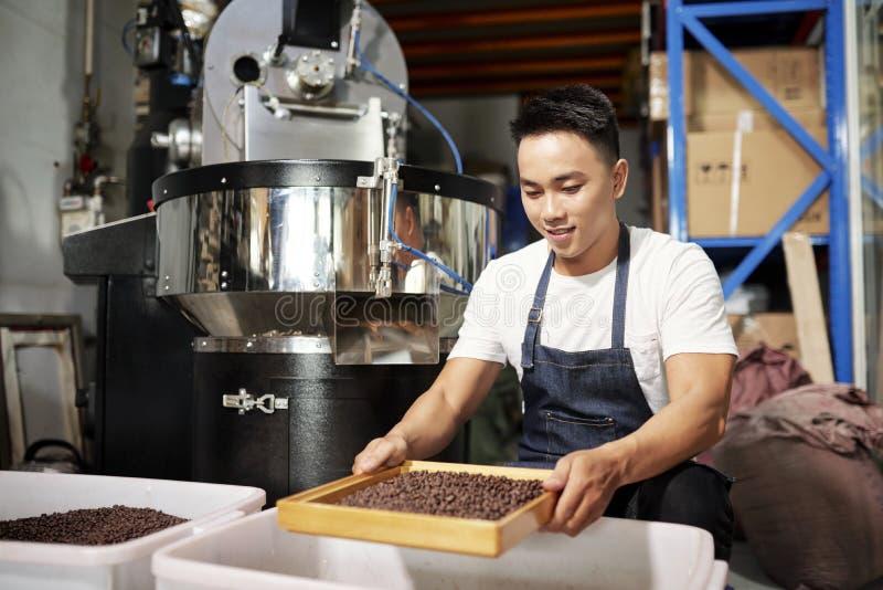 Mannen bearbetar kaffeb?nor royaltyfri foto