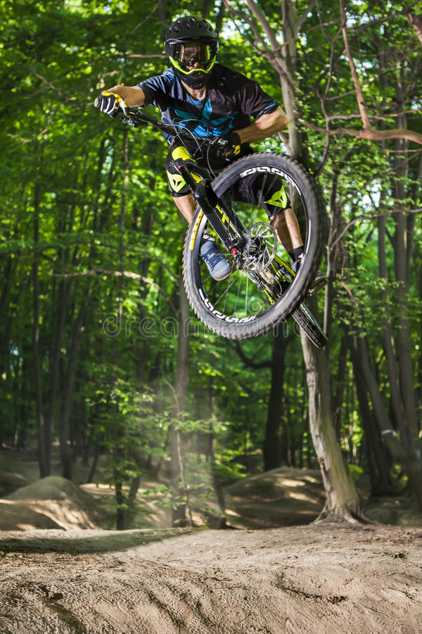 Mannen cyklar i den gröna skogen royaltyfri foto
