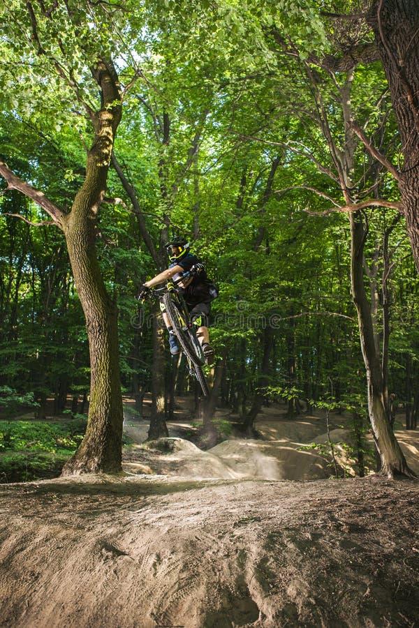 Mannen cyklar i den gröna skogen royaltyfria foton