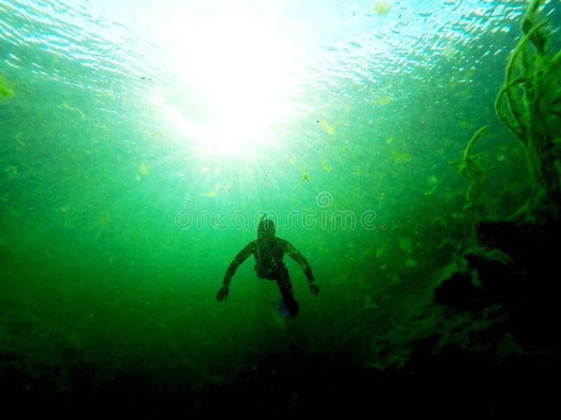 Mannen från det djupt - Freediving i Sinkhole royaltyfri foto