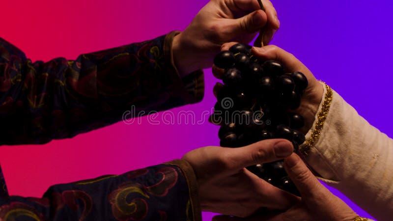 Mannen ger en grupp av stora, svarta saftiga druvor till händer för den gamla kvinnan som isoleras på färgglad bakgrund materiel  arkivfoton