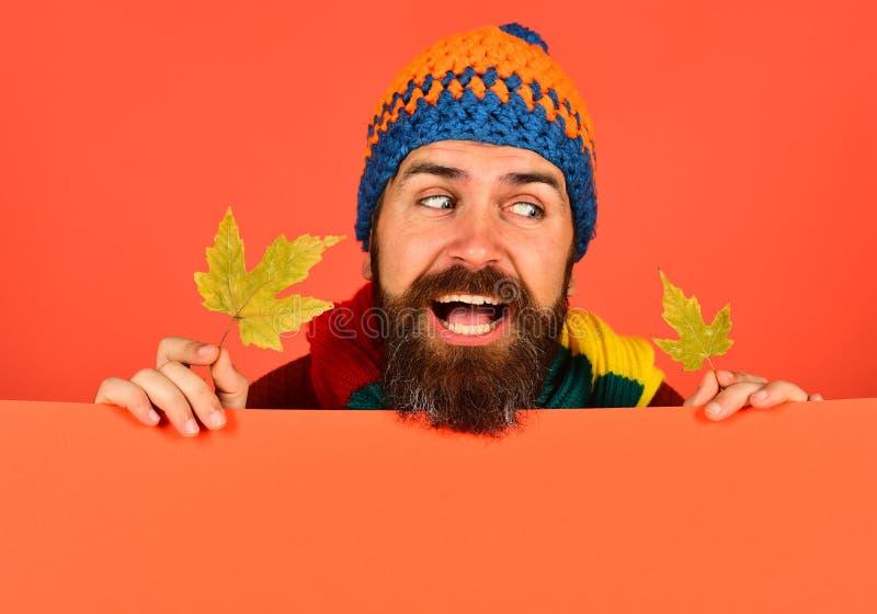 Mannen i hatt rymmer lönnlöv på peachy orange bakgrund royaltyfria foton