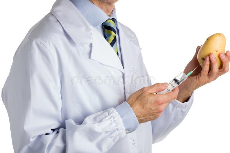 Mannen i medicinskt vitt lag gör en injektion till potatisen royaltyfria foton