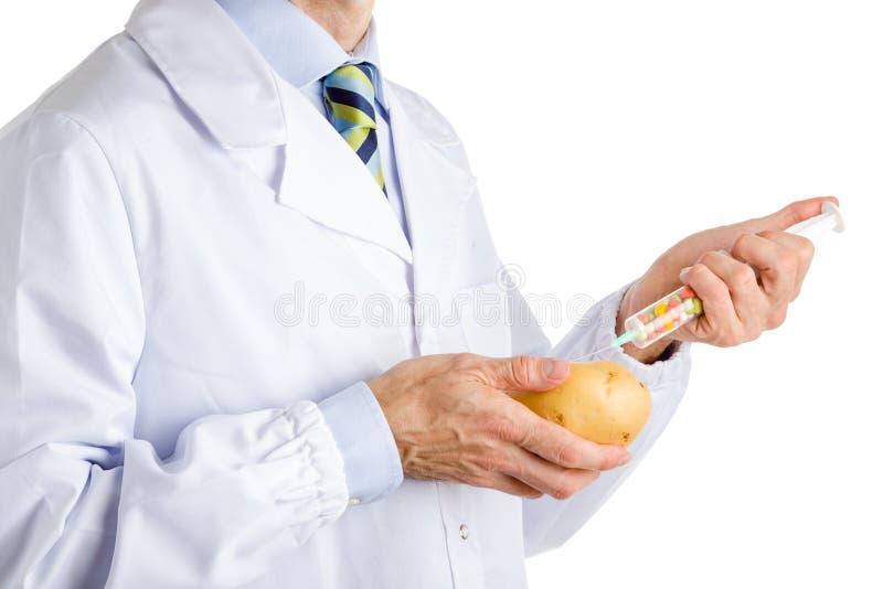 Mannen i medicinskt vitt lag gör en injektion till potatisen arkivfoton