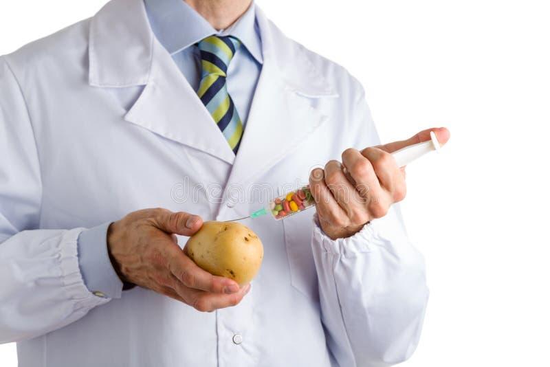 Mannen i medicinskt vitt lag gör en injektion till potatisen royaltyfria bilder