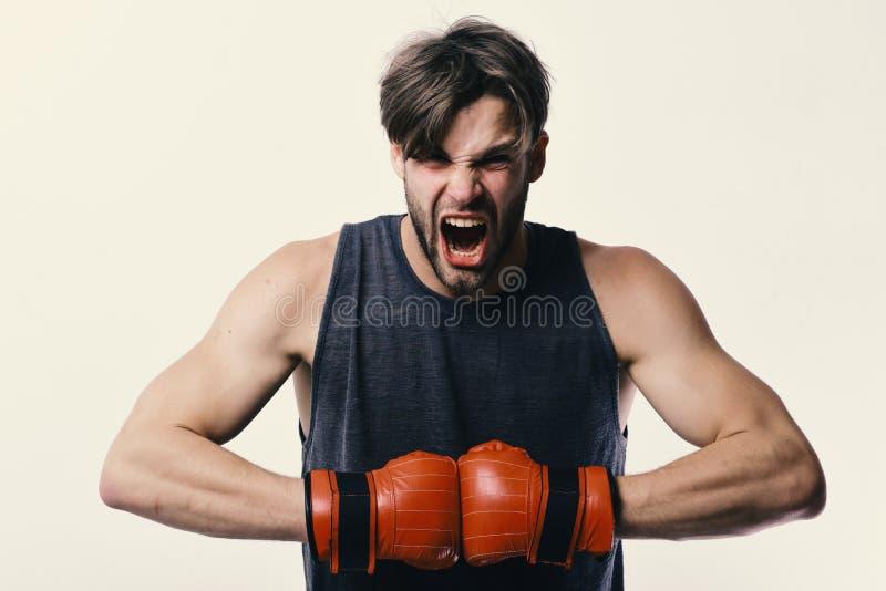 Mannen med borstet och den rasande framsidan bär boxninghandskar Boxaren gör slag och stansmaskiner som utbildning Sportar och ko royaltyfria bilder