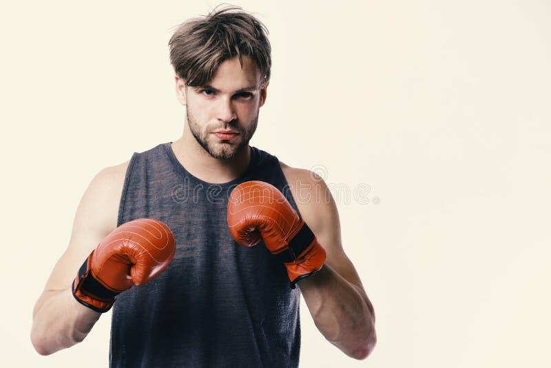 Mannen med borstet och den säkra framsidan bär boxninghandskar royaltyfri foto