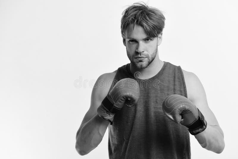 Mannen med borstet och den säkra framsidan bär boxninghandskar arkivbilder