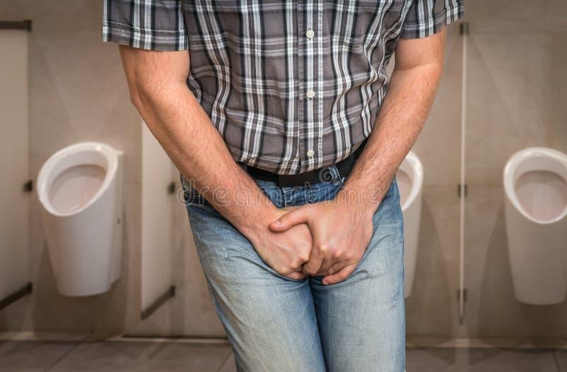 Mannen med händer som rymmer hans klyka, önskar han att kissa - incontinenc arkivbilder