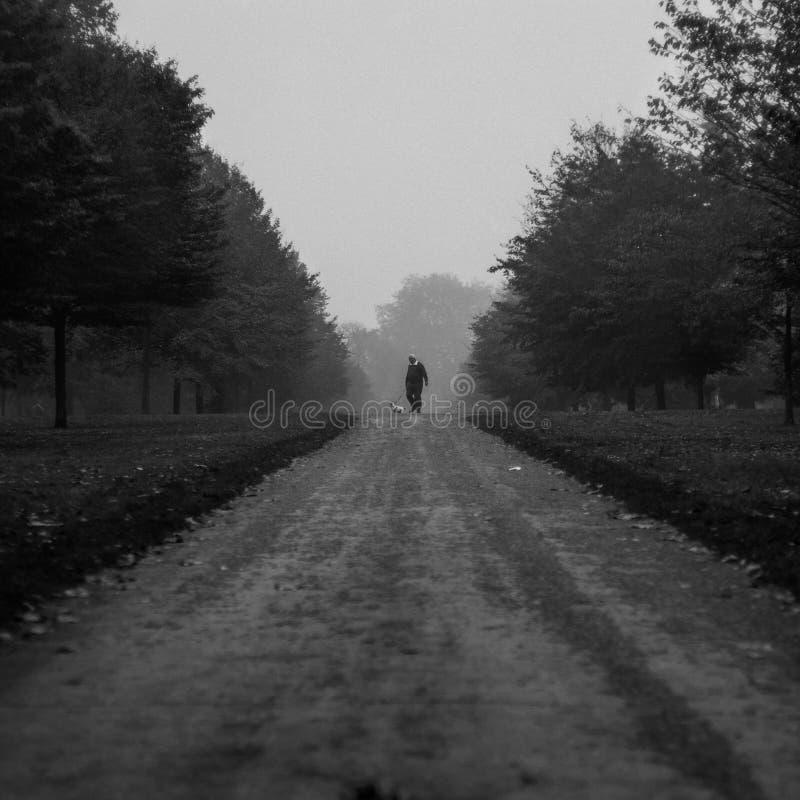 Mannen med hans ta för hund går runt om Kensngton trädgårdar i en dimmig dag royaltyfri foto