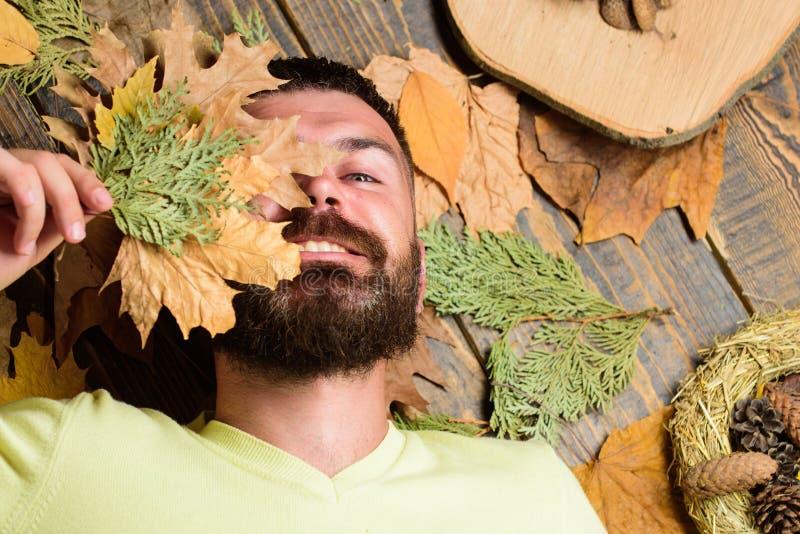 Mannen med skägget och mustaschen tycker om torra sidor för säsonghållhösten Nedgångatmosfärattribut Mannen uppsökte hipsteren lä royaltyfri bild
