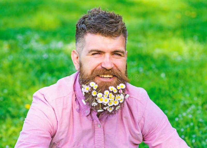 Mannen med skägget på lycklig framsida tycker om liv i ecologic miljö Eco vänligt livsstilbegrepp Hipster med tusenskönor arkivfoto