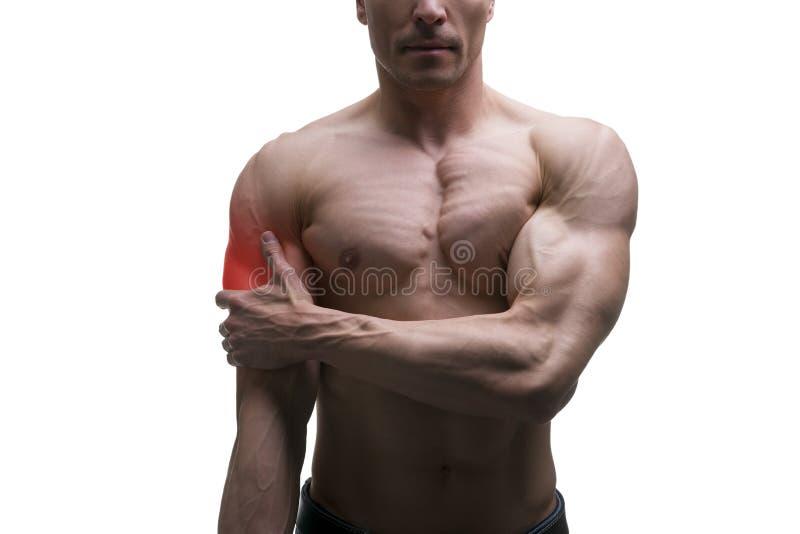 Mannen med smärtar i skuldran, knip i den muskulösa manliga kroppen som isoleras på vit bakgrund arkivbilder