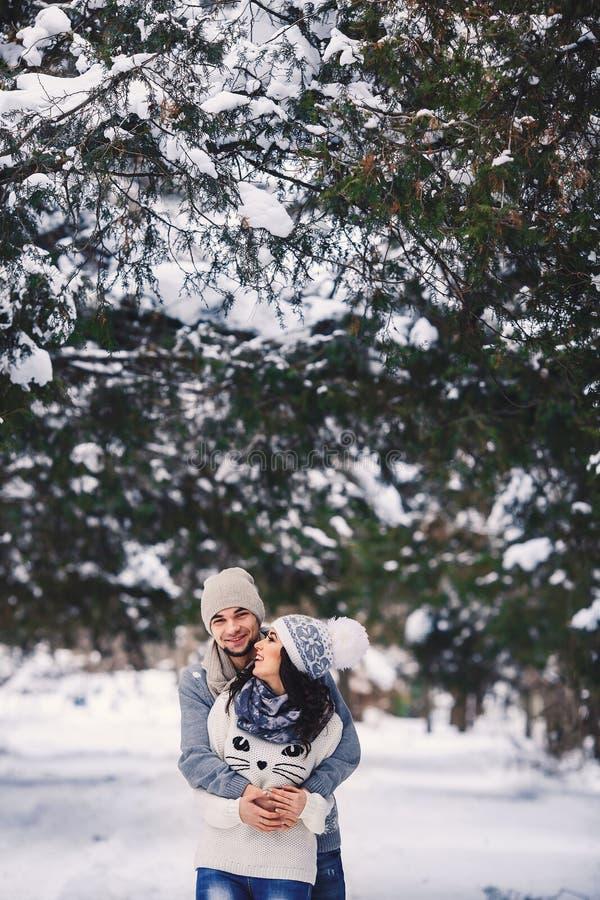 Mannen och flickan i tröjor som kramar i, parkerar i vinter vintern går, vilar arkivfoton
